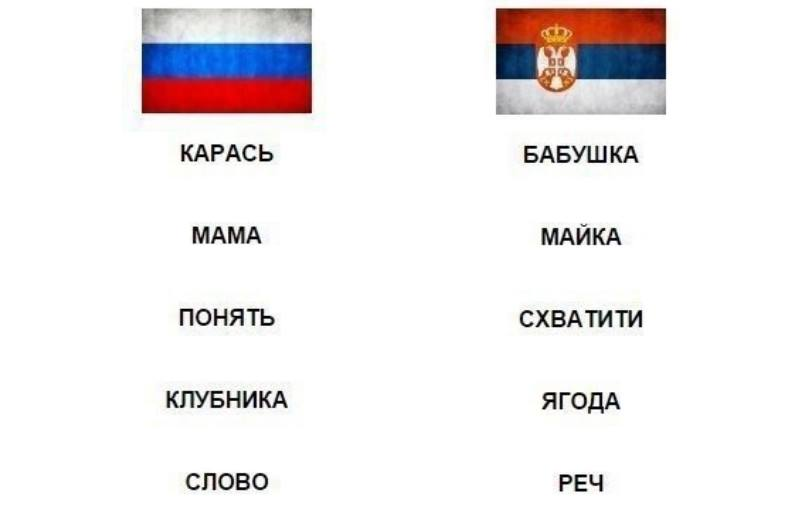слова на русском и сербском